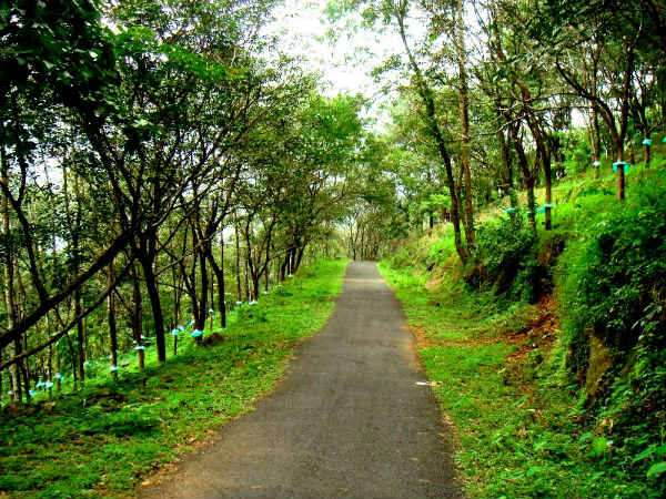 Sirumalai Forest Reserve